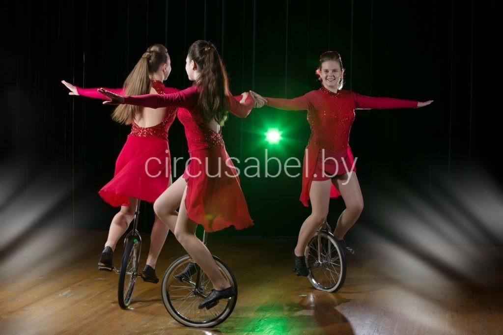 2.Велофигуристы на моноциклах