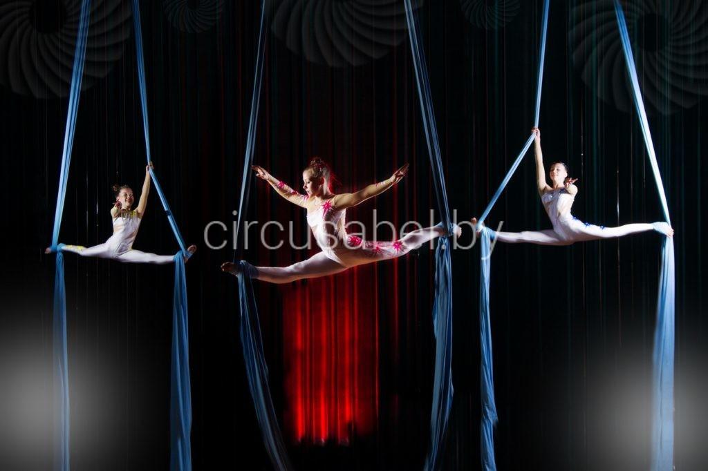 4.Воздушные гимнасты на полотнах